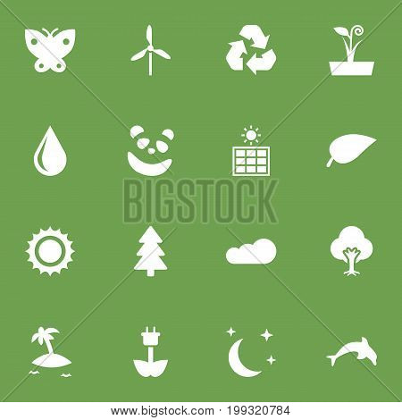 Collection Of Spruce, Conservation, Solar And Other Elements.  Set Of 16 Natural Icons Set.