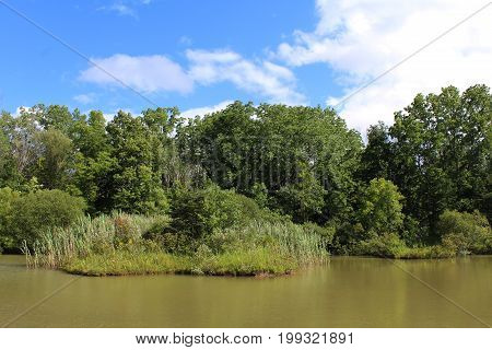Secluded pond with blue sky and high water