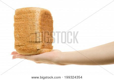 Pieces of bread in female hands isolated on white background isolation