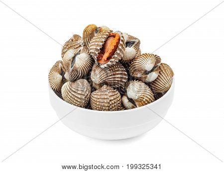 Cardiidae shellfish seafood in white bowl isolated on white background