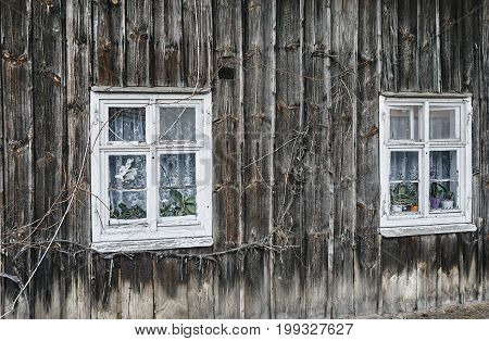 windows wooden house in the countryside in Poland