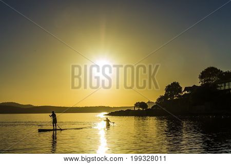 Sandy Bay beach Hobart Tasmania - 7 March 2014: men taking paddle boards for early morning paddle