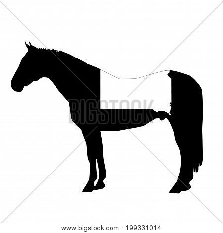 Vector Horse Silhouette With South Dakota Boundary Patch Illustration