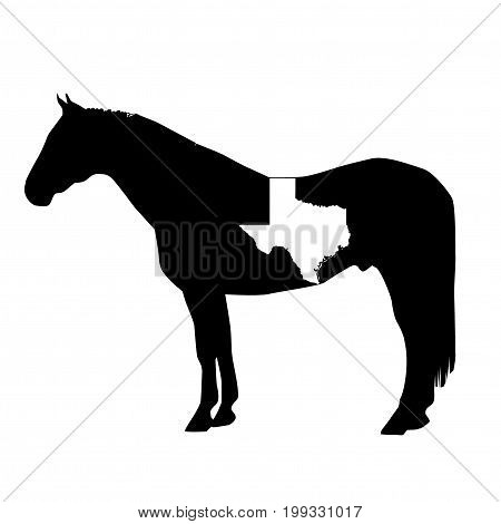 Vector Horse Silhouette With Texas Boundary Patch Illustration