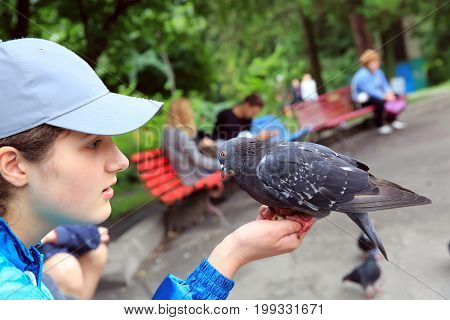 The girl feeds pigeons in the park