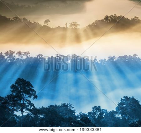 Sunlight with soft focus of beautiful scenary of mist with mountain range at PanoenThung view point in Kaeng Krachan national parkThailand abstract color of nature concept