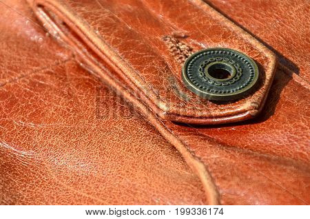Brown Leather Texture. Useful As Background For Any Design Work. Macro Photo Of A Button On Outer Cl