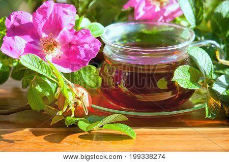 Healthy tea of dogrose berries. Herbal medicine