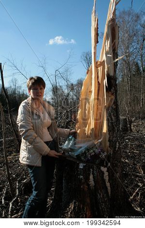 Khimki, Moscow region, Russia - April 23, 2011. Politician Evgeniya Chirikova in the Khimki felled forest that she was protecting. Defenders of the Khimki forest opposes the felling of trees.