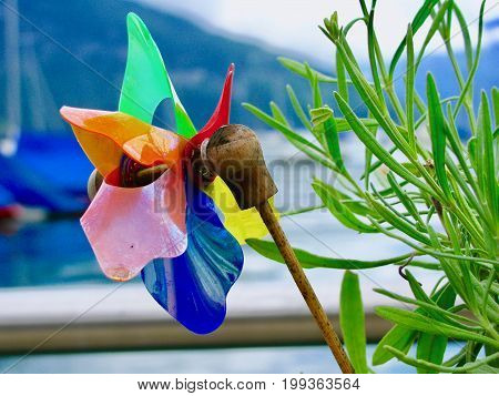 Colourful paper windmill, pinwheel with blurry harbour background