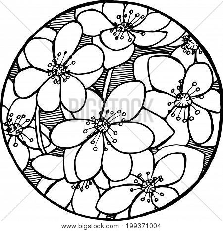 Black and white sakura pattern. Natural motive