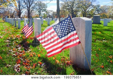 Gravestones with National American flags in Arlington National Cemetery near to Washington DC, United States