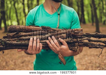 Cropped close up photo of a bearded male tourist during hiking holding wood for a campfire in green t shirt in a forest in the early fall