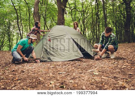 Four Young Cheerful Best Friends Are Setting Up A Tent In Forest, On A Fallen Brown Leaves, Team Wor