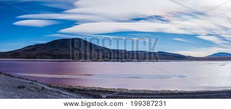 Laguna Colorada (Red Lagoon) is a shallow salt lake in the southwest of the Altiplano of Bolivia South America