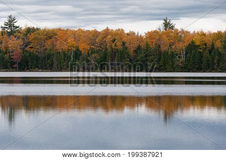 Autumn colors on lake water reflection of yellow forest. Ontario Canada