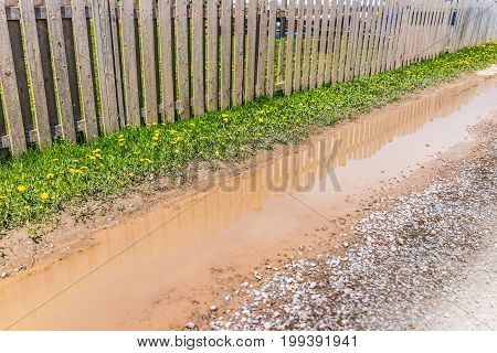 Dirty Mud Puddle By Fence And Yellow Dandelion Flowers On Sidewalk Path In Summer