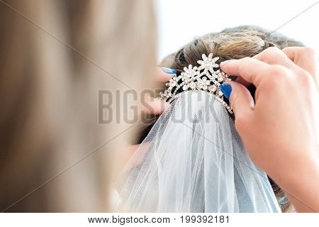 Back side view of girl sets the veil of the bride. White background
