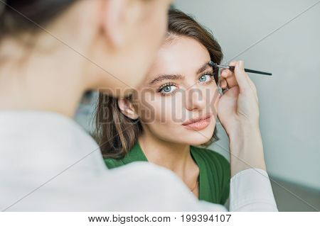 Beautiful brunette woman paints the eyebrows. Beautiful woman face. Makeup detail. Beauty girl with perfect skin