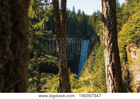 Big waterfall disappearing in colorful dense forest