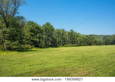 Green grass and blue sky of this open field in Harford County Maryland.