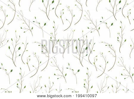 Pattern seamless of Tree branch different foliage natural branches green leaves elements in watercolor style. Vector decorative beautiful delicate background texture print design elegant illustration