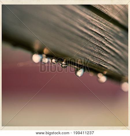 Drops of dew on a wooden fence. brown creme red