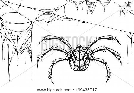 Scary black and white spider and torn web. Halloween symbols and accessories. Isolated vector illustration