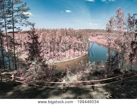 Gauja river and pine forest of national park. Surreal effect, infrared photograph, color swapped process.