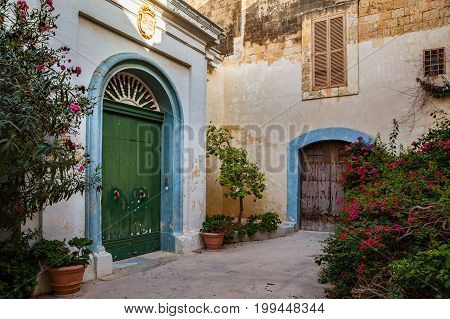 Streets of old town at sunny day. Cozy yard with exotic plants, Mdina, Malta.