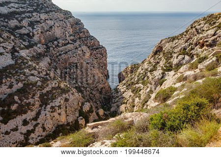 Limestone rocks covered by exotic plants - coast of Malta island. Natural haven in rocks