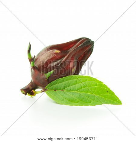 Roselle Fruit With Leaf