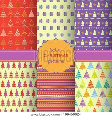 Set of colorful Christmas patterns with fir trees snowflakes and decorative frame in lilac red yellow and white colors