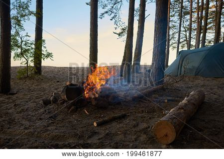 Tourism adventure traveling camping active lifestyle trekking and hiking concept. Picture of campsite with fireplace with blazing fire and tent among trees in background no people around