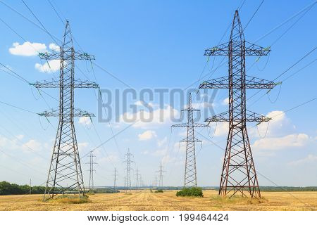 High-voltage power lines pass through yellow fields