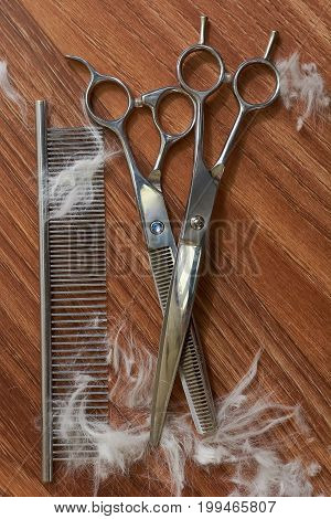 Comb and pet grooming scissors. Hair cutting tools, wooden background. Pet groomer training program.