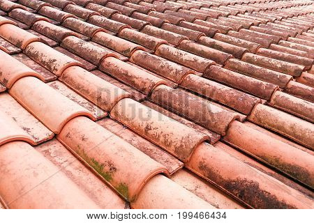 Close-up On Moldy Roof Tiles In Humid Tropical Climate