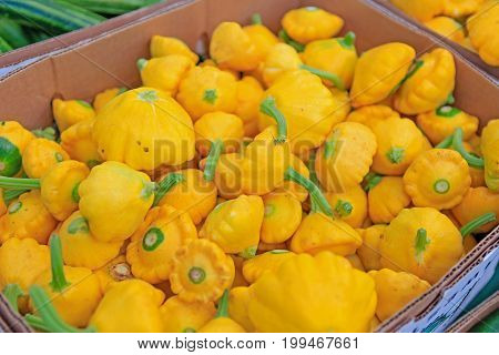 Yellow Patty Pan Squash Displayed For Sale At The Farmers' Market