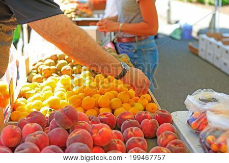 Fresh Organic Fruits At The Local Farmers' Market.