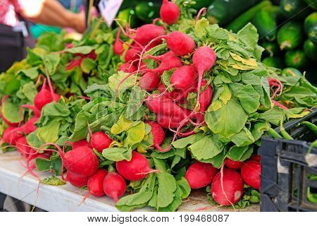 Organically Grown Radish On Sale At The Local Farmers' Market.
