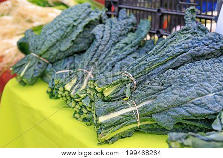 Bunches Of Kale At The Local Farmers' Market.