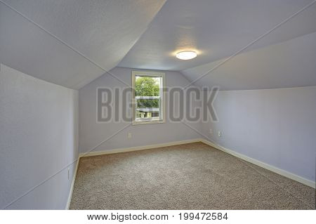 Small Empty Blue Bedroom Accented With Vaulted Ceiling