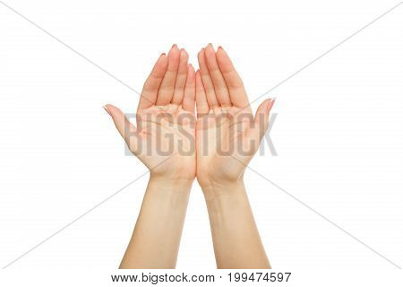Female hands with french manicure isolated on white background. Concept of charity, support, protection and care, close-up, copy space, cutout