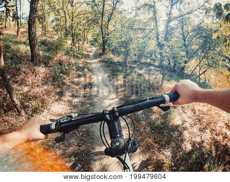 Bicycle steering wheel hand path forest trees green go pro action camera. Copy space.