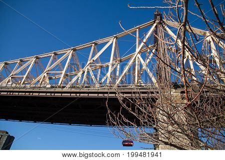 Queensboro bridge and tree without leaves and blue sky