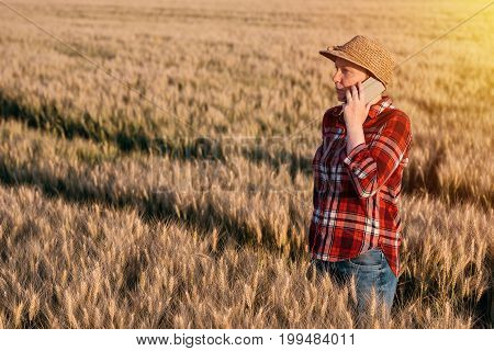 Female farmer in cultivated wheat field talking on mobile phone. Woman with straw hat and plaid shirt as farm worker.