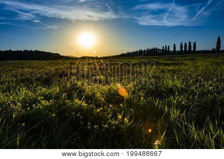 Sunset nature. Clear green grass on meadow and blue sky with clouds lighten from sun.