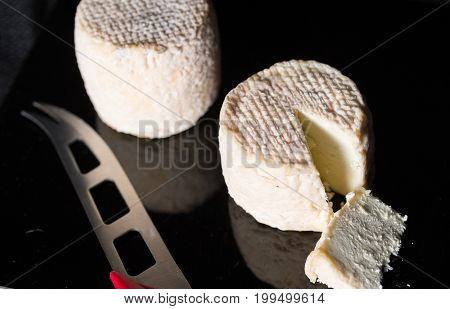 Studio Shot Of Traditional Goat Cheese Chabichou