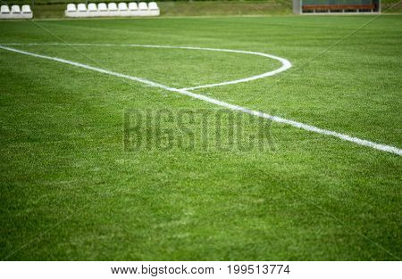 White line on a green football field
