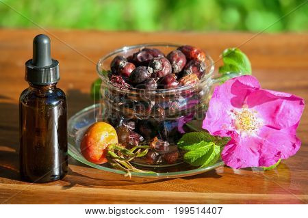 Cup with dry berries of a dogrose and bottle of essential oil. Concept of preparation of healthy drink and essential oil.